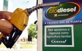 Voilà plus de quarante ans que le Brésil a commencé à produire des biocombustibles. ©DR